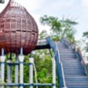 Discover Singapore's Green Spaces