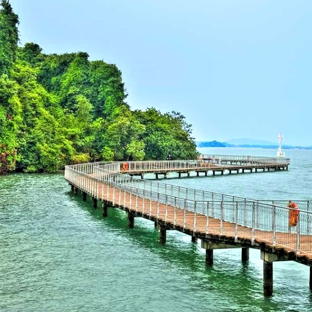 Pulau Ubin & Chek Jawa – Rustic Singapore & A Wetlands Treasure