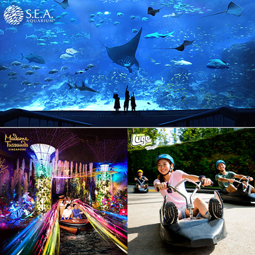 S.E.A Aquarium + Madame Tussauds + 2 Luge Combo [Adult]