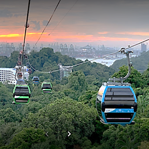 1 Day Explore Nature Reserve & Mt Faber Tour