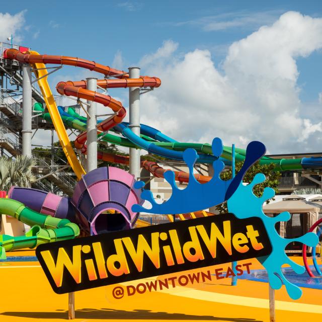 Wild Wild Wet (SRV)