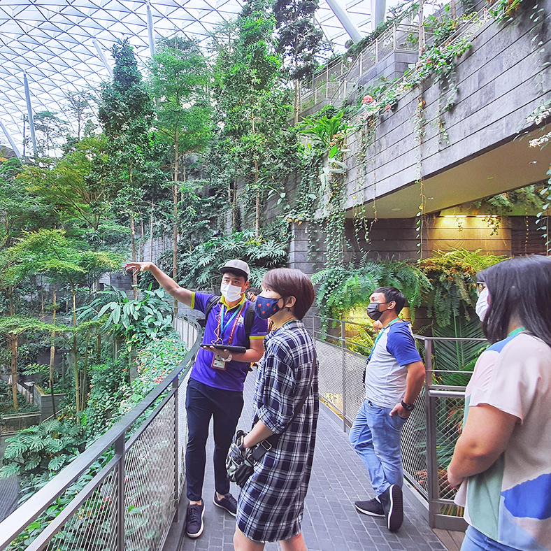 A Guided Tour of Changi Airport: The Jewel Connection